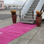 bermuda-airpost-pink-carpet-620x413