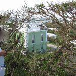 After Hurricane Fabian Bermuda Sept 5 2003 (1)
