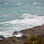 Tropical Storm Maria 2011 bda (1)