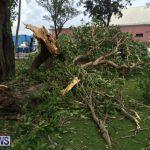 Hurricane Fay Bermuda 2014 (12)