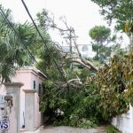 Hurricane Fay Bermuda 2014 (6)