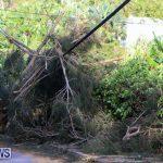 Hurricane Fay Bermuda 2014 (8)
