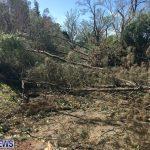 Hurricane Gonzalo 2014 Bermuda (8)