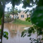 bermuda-rain-flooding-feb-19-2015-62