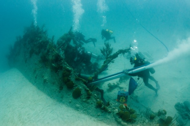Divers use an underwater vacuum to remove sand and silt from the bow of the Mary Celestia.
